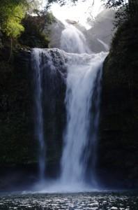 大分県玖珠町慈恩の滝