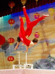 中国文化芸術夢公演