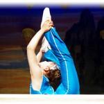 雑技の祭典 柔術